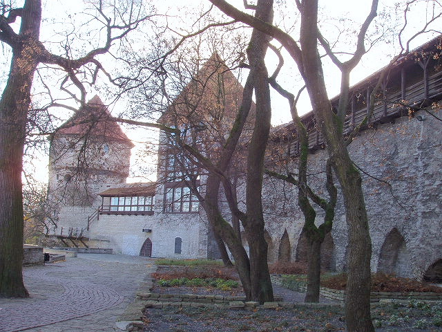 Neitsitorn in Old Town of Tallinn